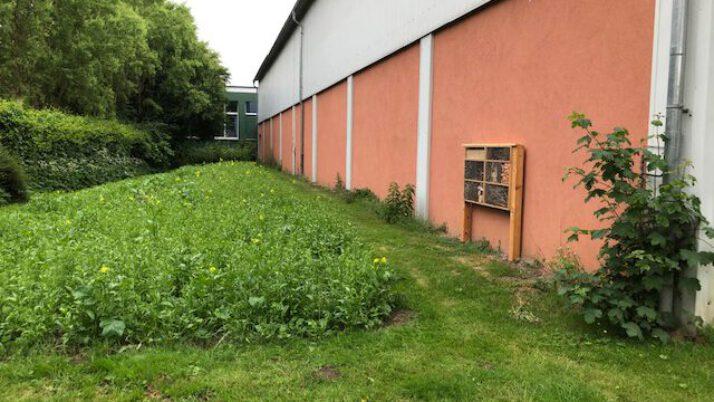 """Projekt """"Summende Grundschulen"""""""